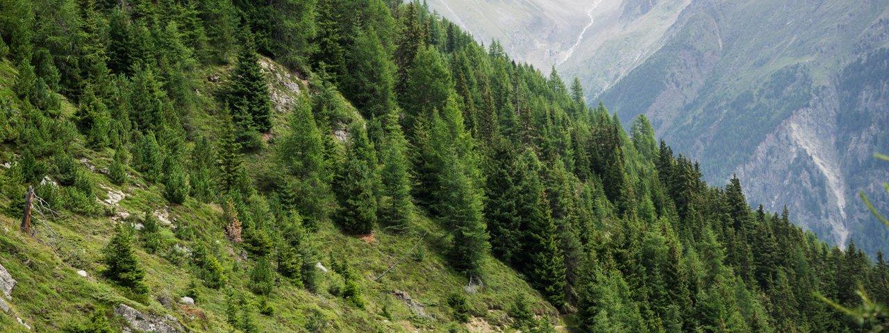 Leiterberg Trail, Sölden, © Tirol Werbung/Peter Neusser