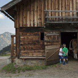 Agroturytyka w Austrii, © Tirol Werbung/Alexander Ziegler