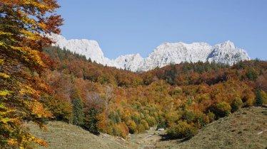 Herbst am Wilden Kaiser