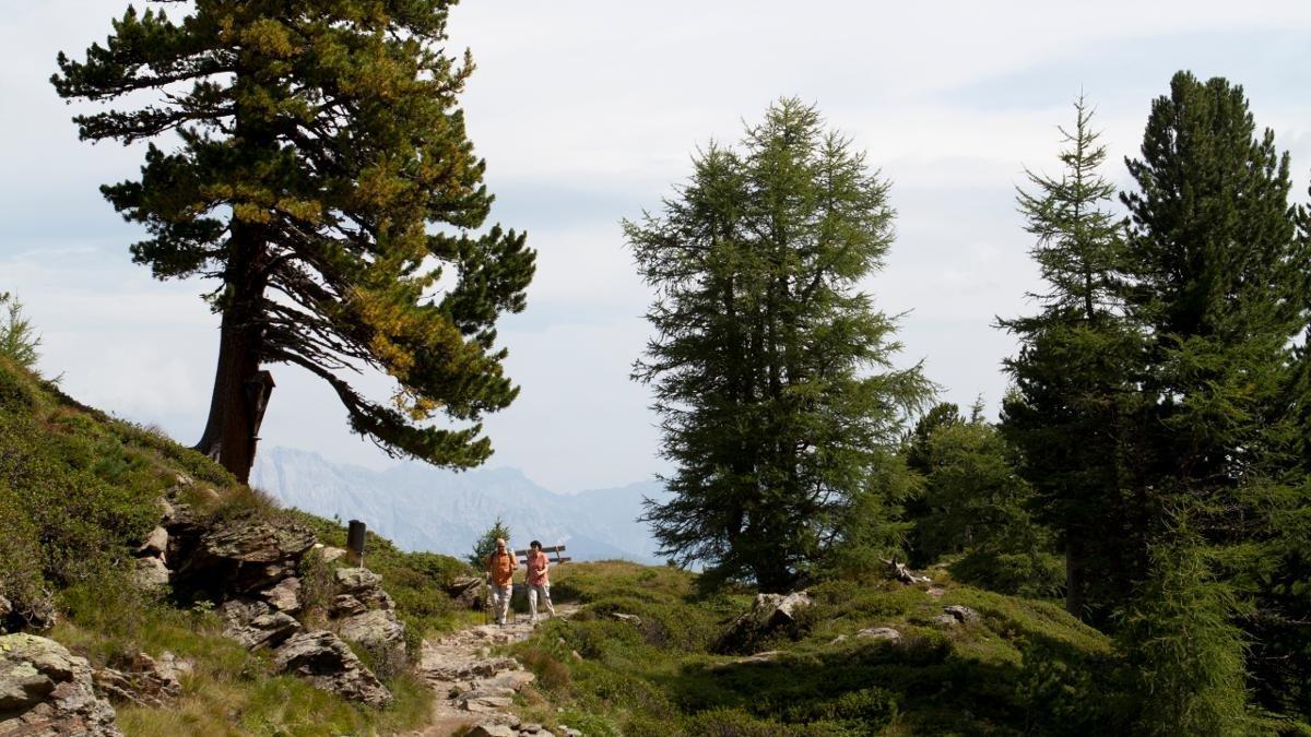 © Tirol Werbung/Jenewein Markus